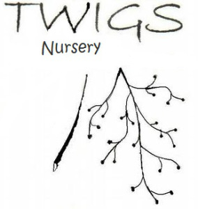 twigs-logo_full