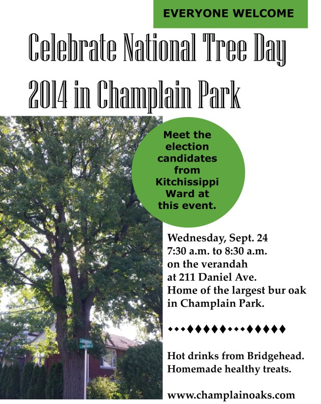 National Tree Day 2014.indd